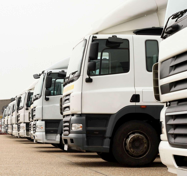 transport management service cornwall