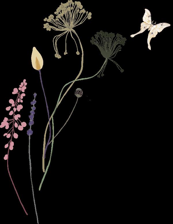 Decorative floral image