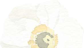White flower decorative image