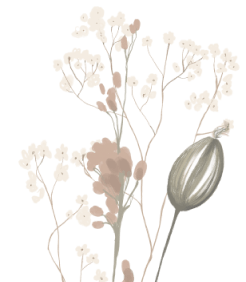 Floral decorative image