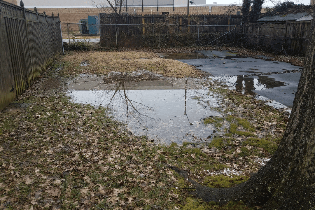 flooded backyard in the fall