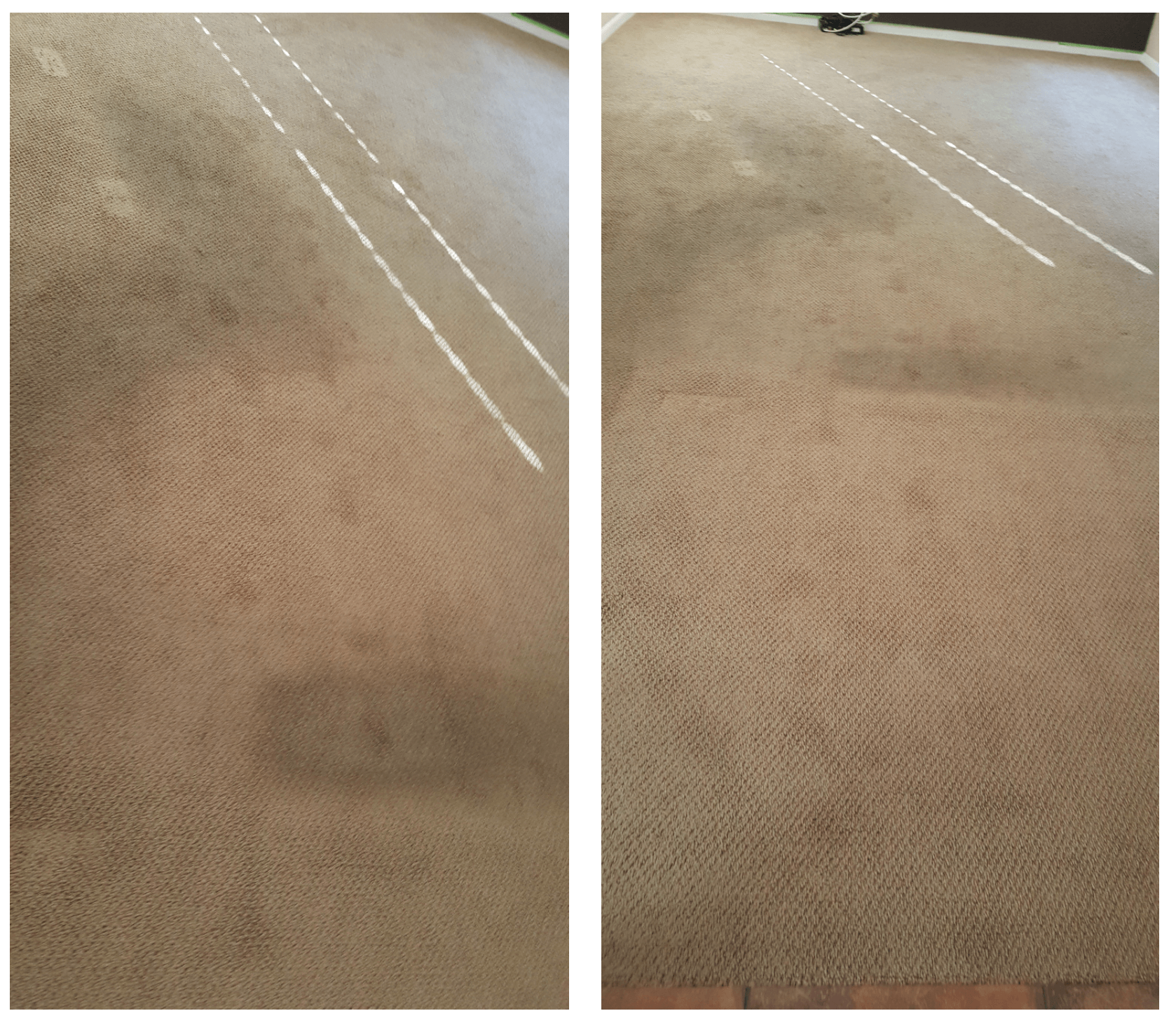 When to Use Carpet Protector?