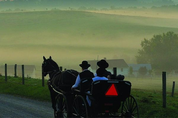 The Legacy of Amish Craftsmanship: 4 Qualities That Set It Apart After going mainstream in the early twentieth century, the Amish style of craftsmanship influenced.