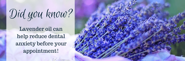 Sprig of lavender that can help reduce dental anxiety