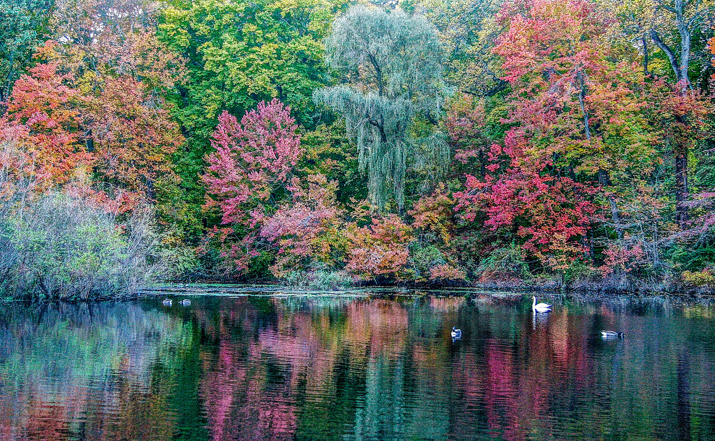 Jeweled Autumn