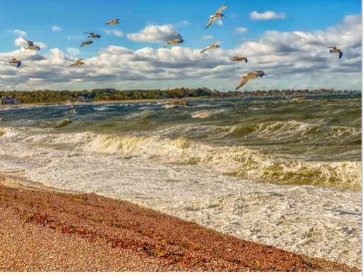 Against the Wind by John Renner