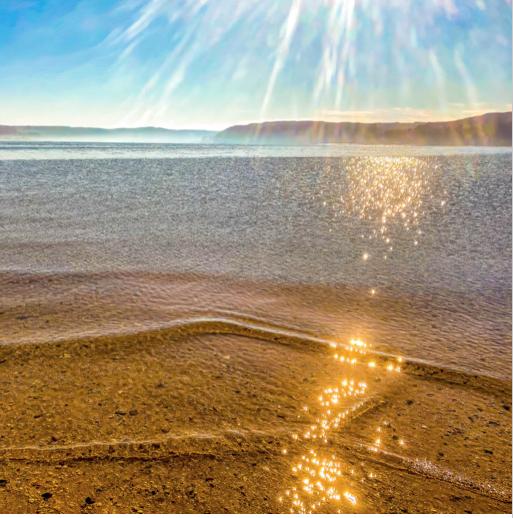 Sagamore Sunshower by John Renner
