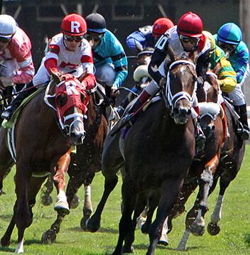 Horse racing derby
