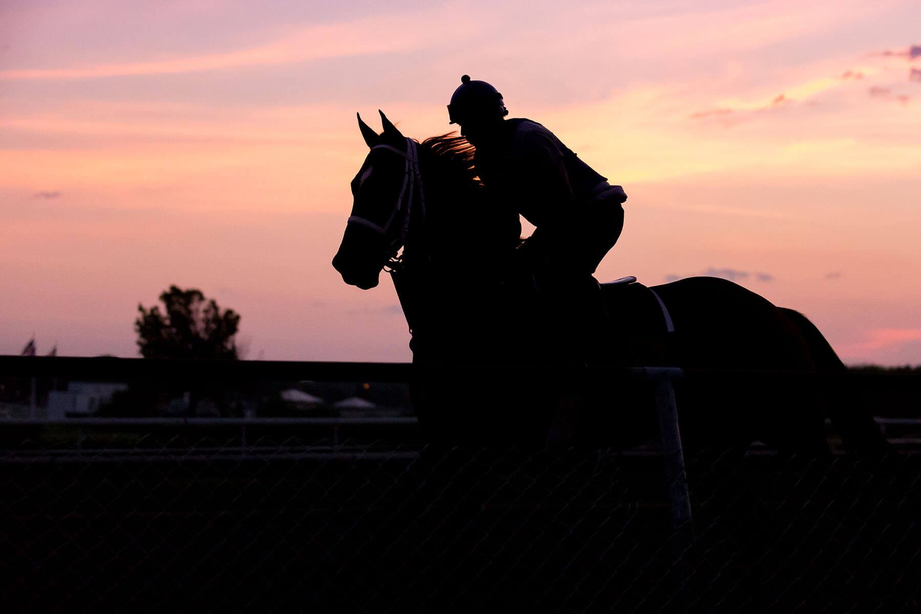Horse and jockey riding in sunset