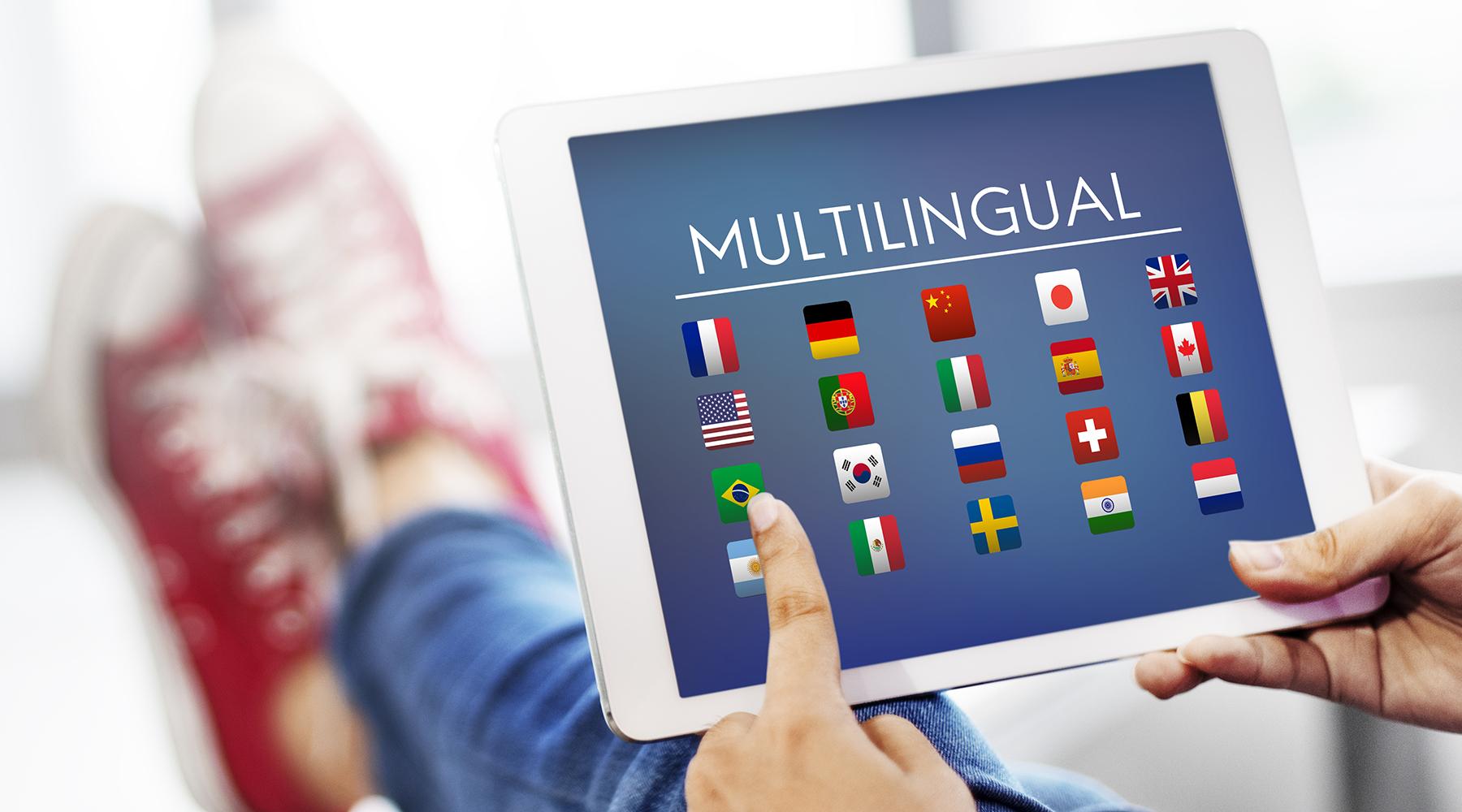 Multi-lingual e-commerce solutions