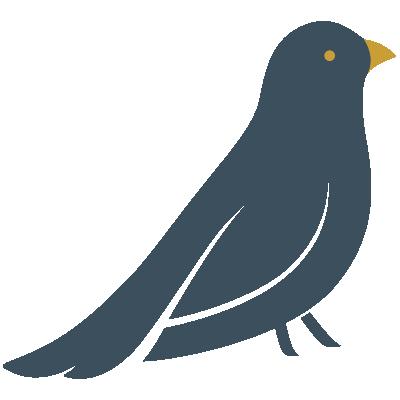 Bowerbird Interiors Bird Logo