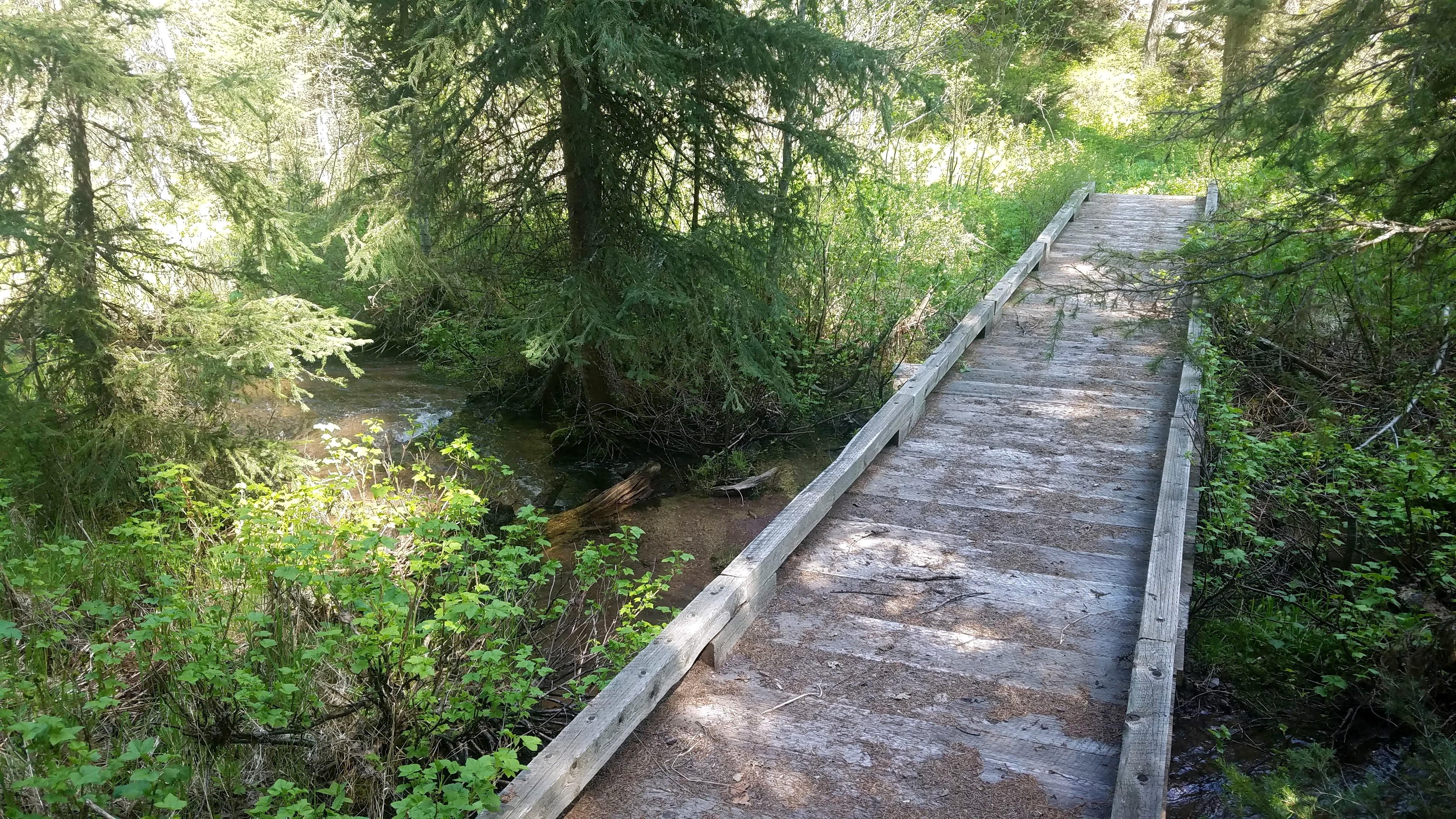 Albert Creek
