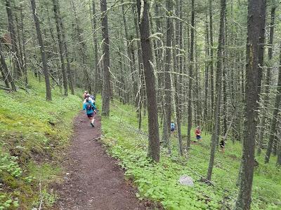 Larry Creek Trail