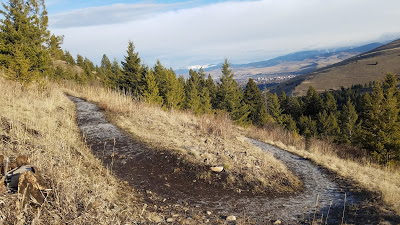 Barmeyer Trail in Missoula, MT