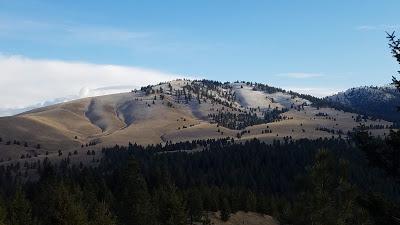 Barmeyer Trail in Missoula, Montana