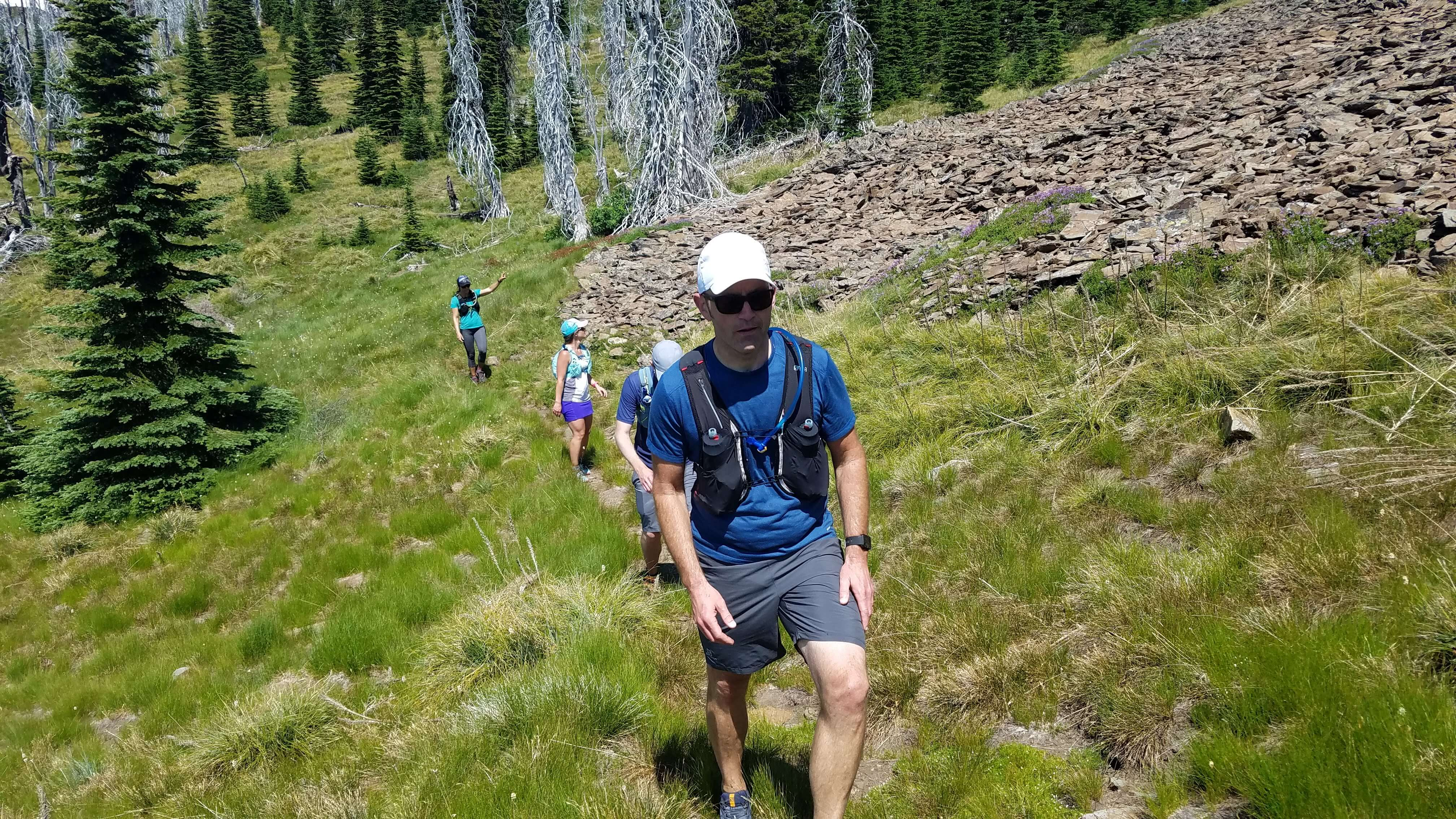 Alpine Running Guides open meadow