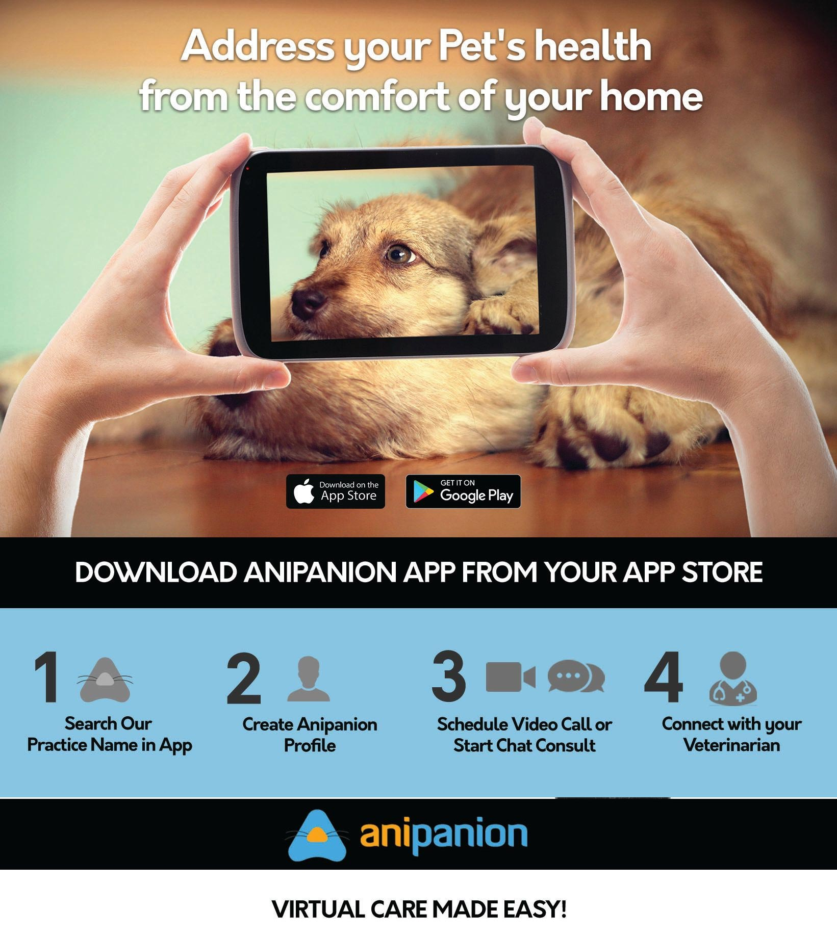 Download Anipanion App from App Store or Google Play
