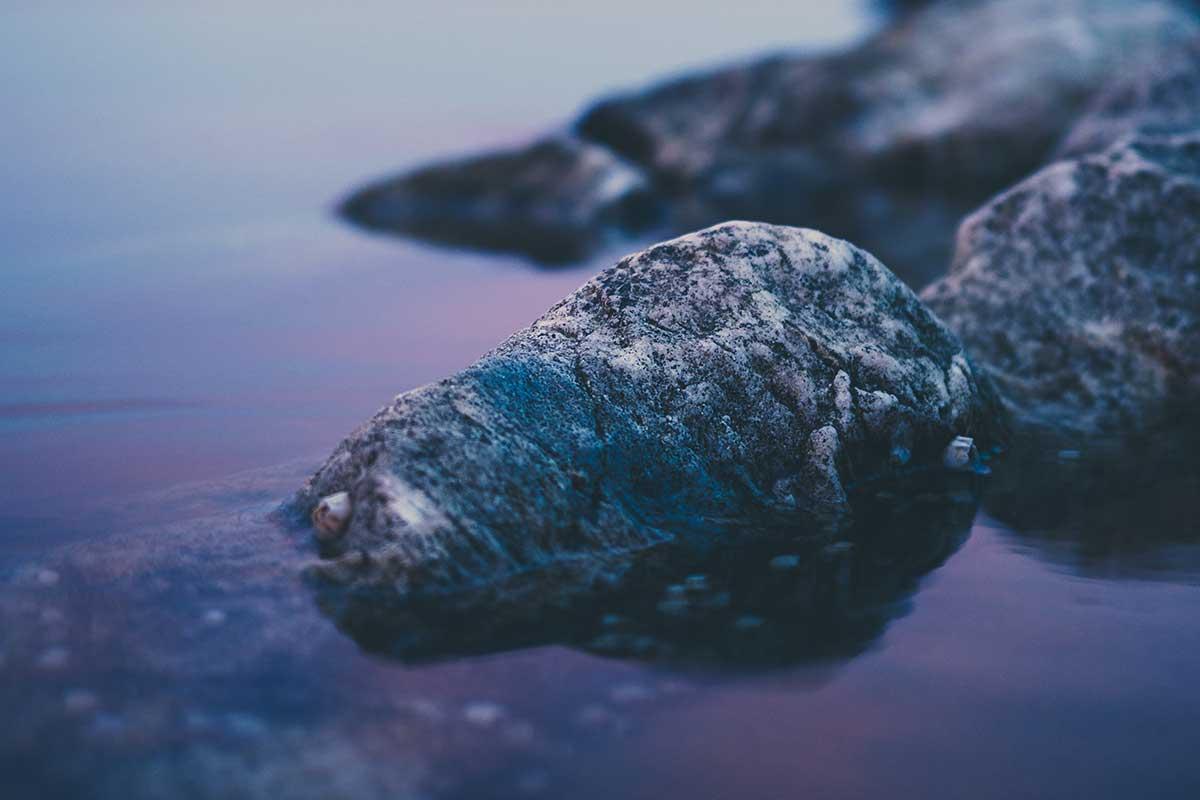 Stenar i ett hav  - Remainly