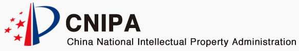 Intellectual Property Office of China: AI System Development Status and Plans