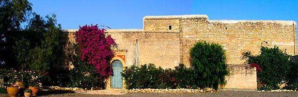 Le Fort de Mogador