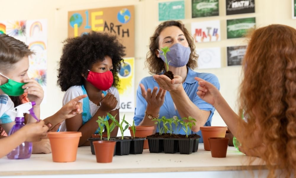 Practical Ways To Make Your School More Sustainable