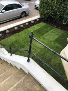 new grass eastbourne