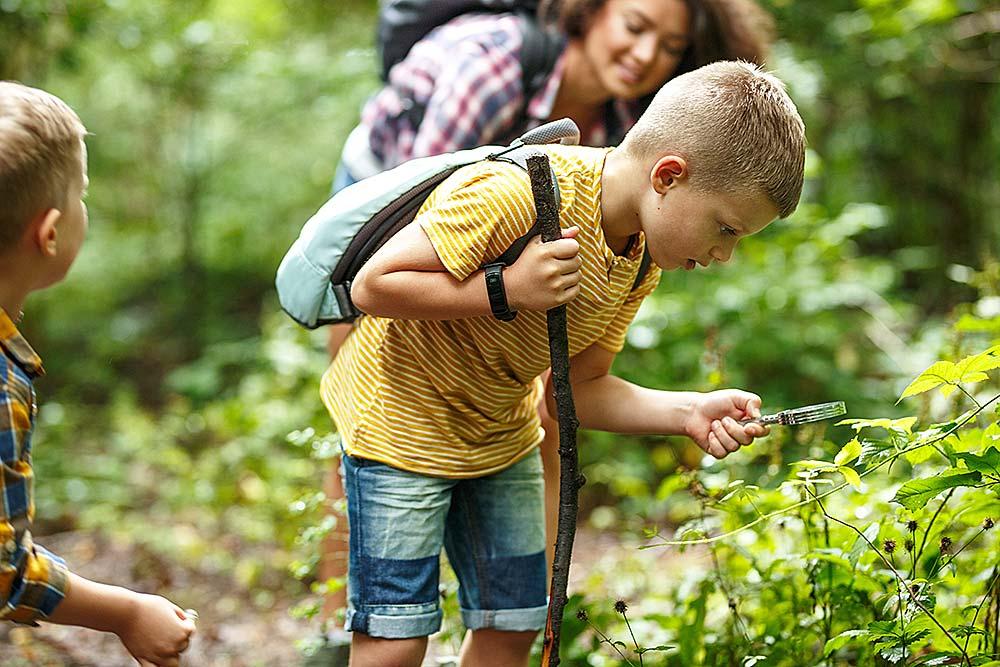 Rosinchen for Kids Foto