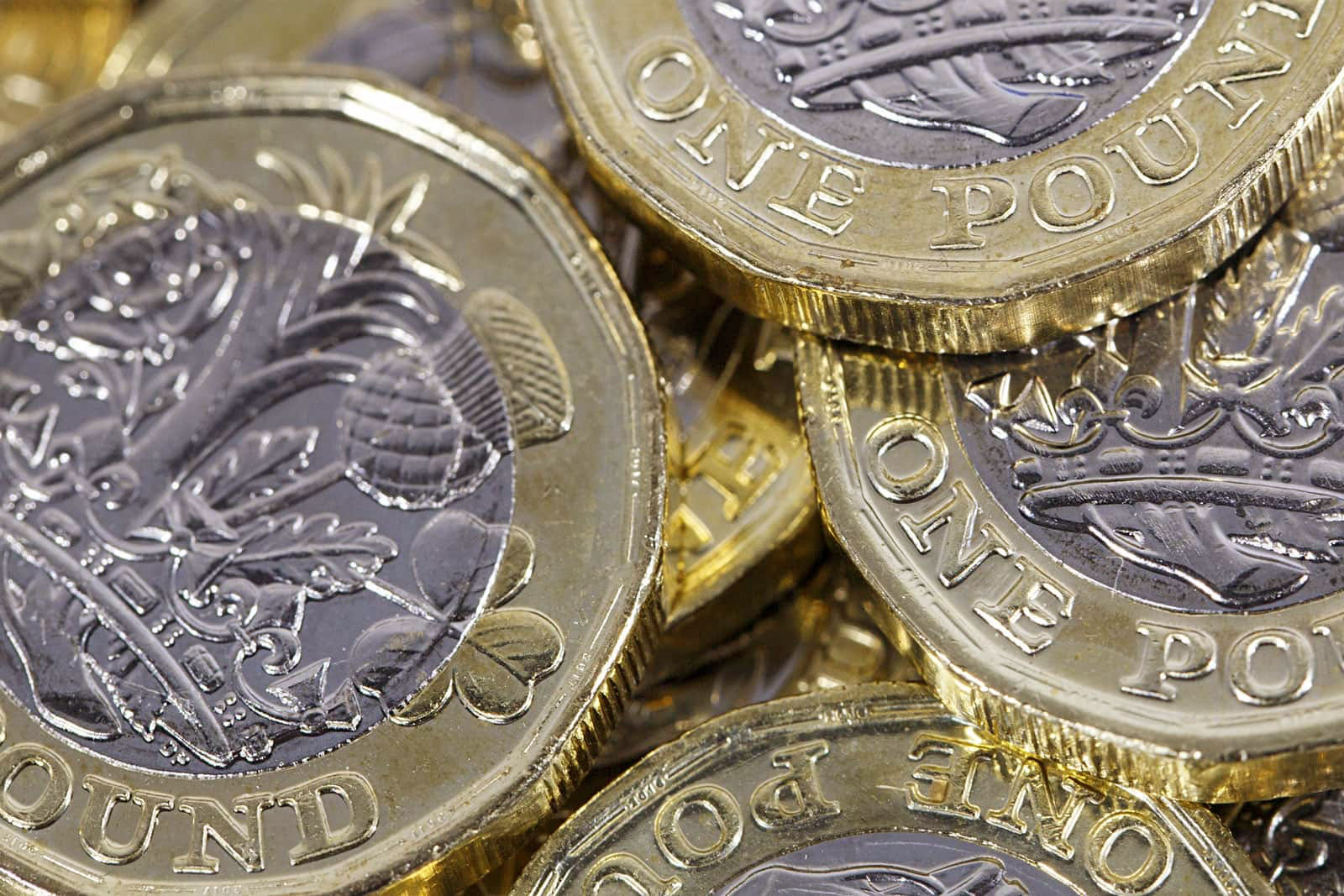 Henley Town Council - collection of pound coins