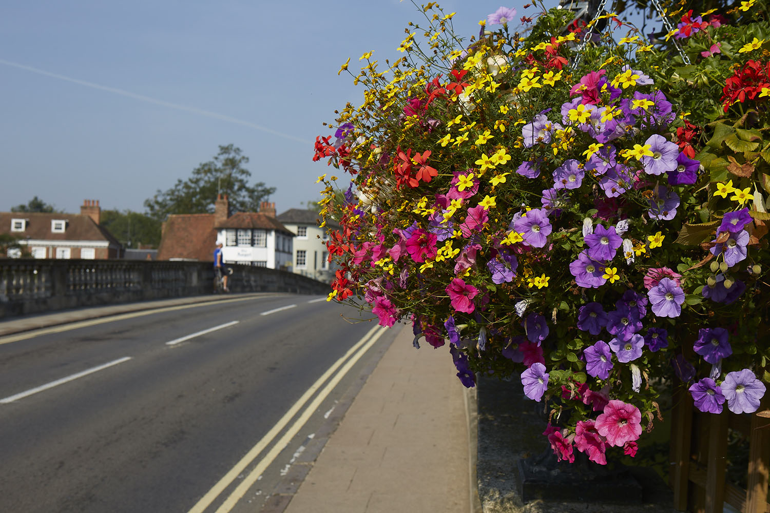 Henley Town Council - bright pink, purple and red flowers growing next to the road