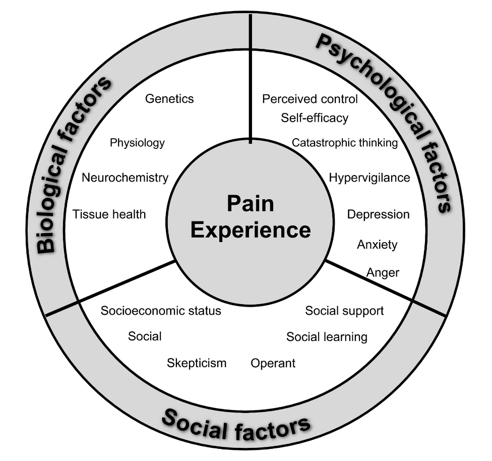 Biopsychosocial Model of Pain