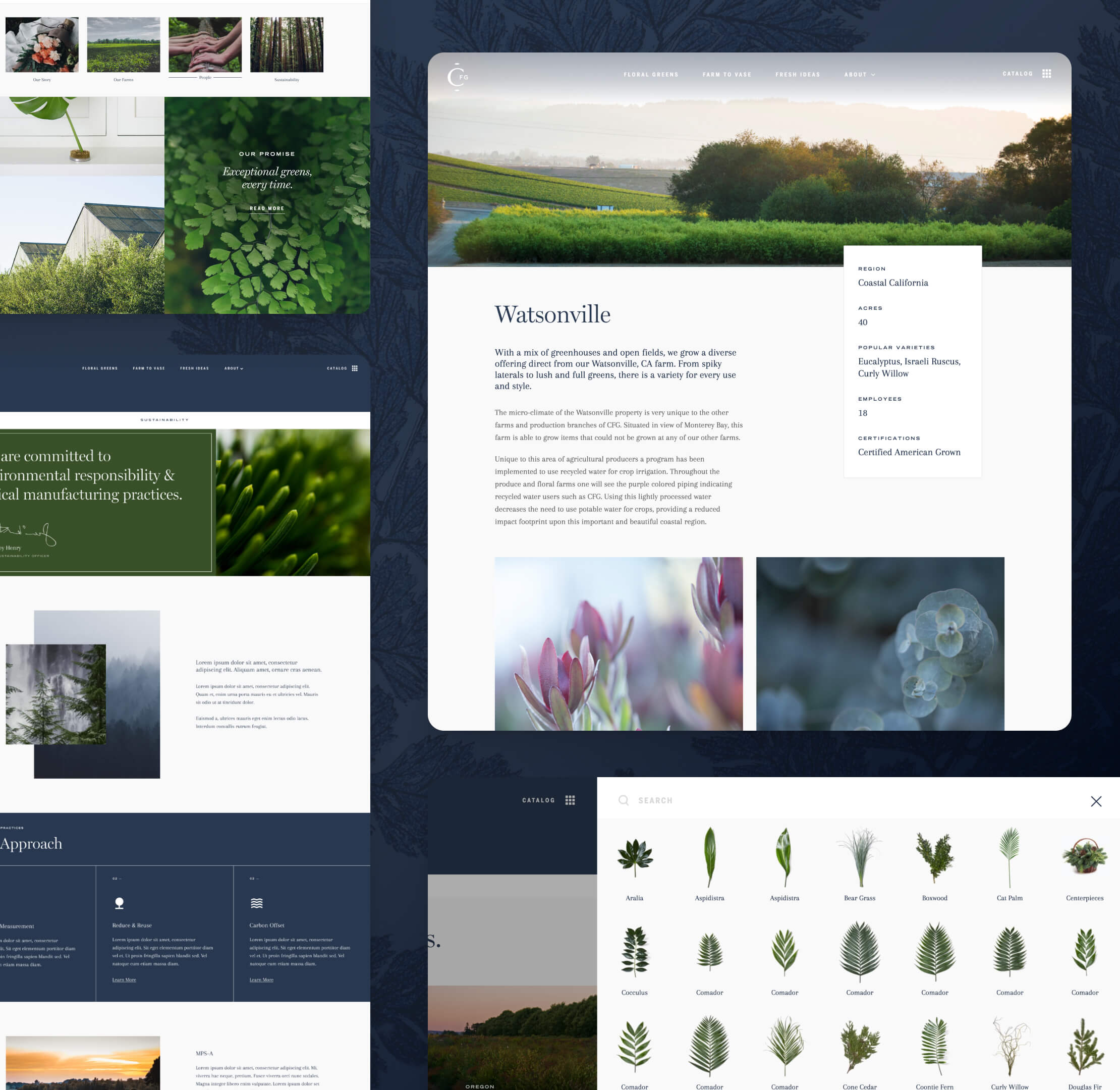 Various screen captures of Continental Floral Green's website interior pages.