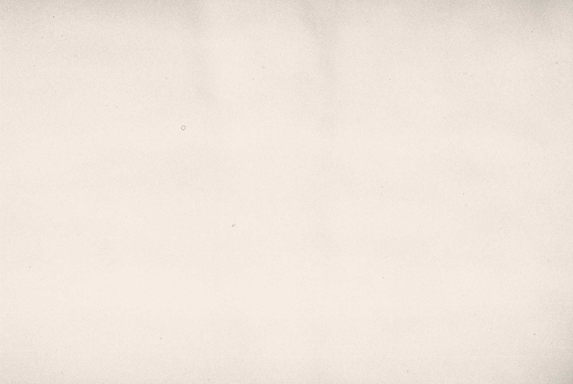film grain texture white