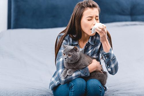 Allergies to pet dander
