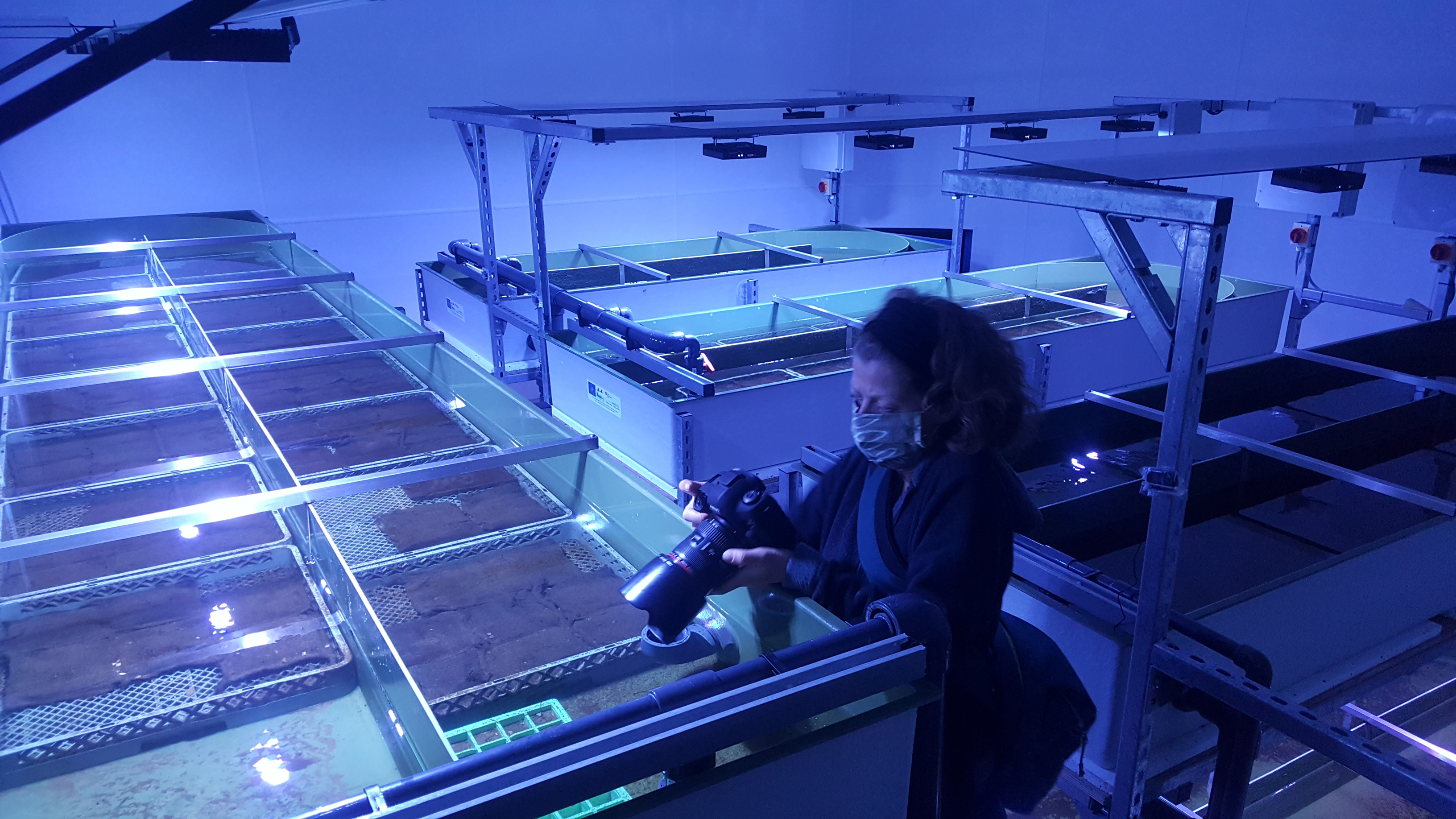 Cornwall Climate Care gallery - in the laboratory