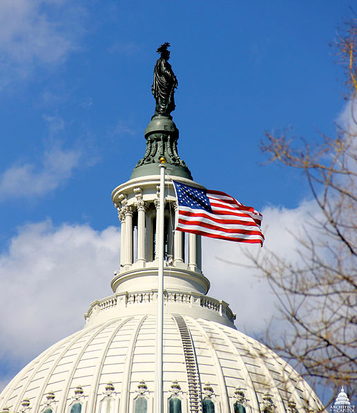 US_House_of_Representatives.jpg