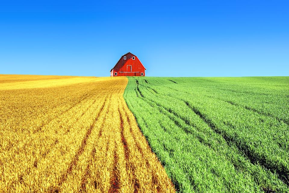 farm-2796509_960_720.jpg