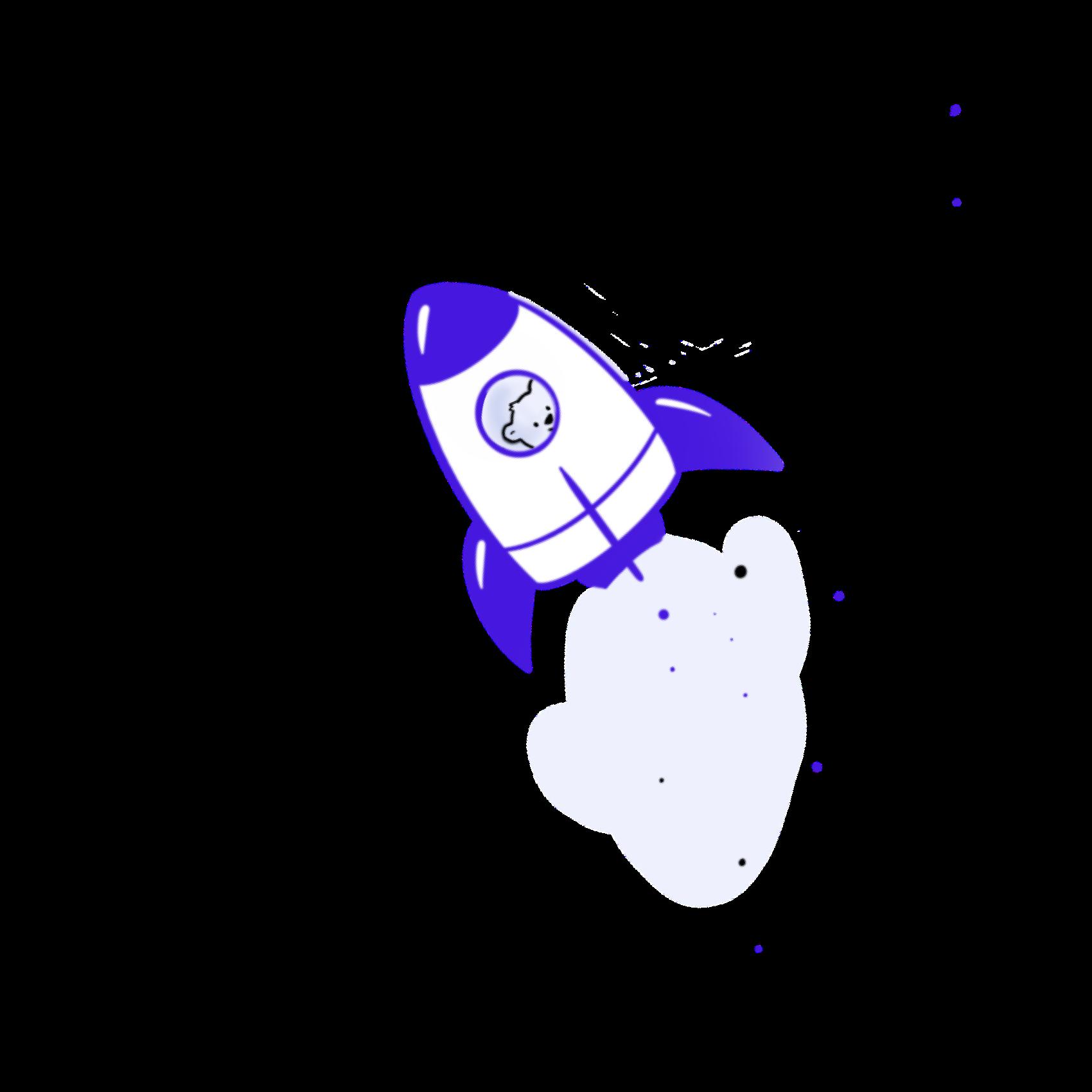 Bearer rocket