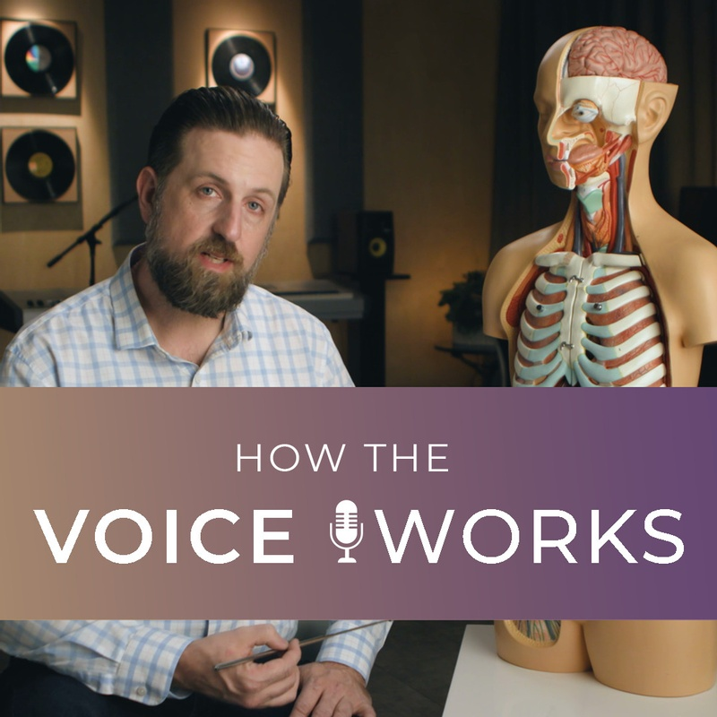 How The Voice Works