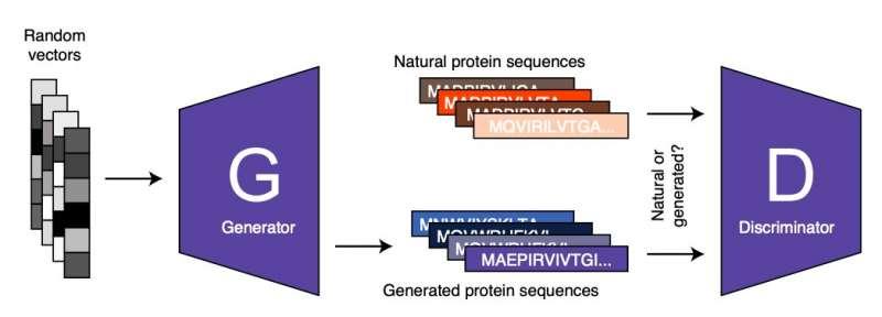 https://scx1.b-cdn.net/csz/news/800a/2021/proteinganag.jpg