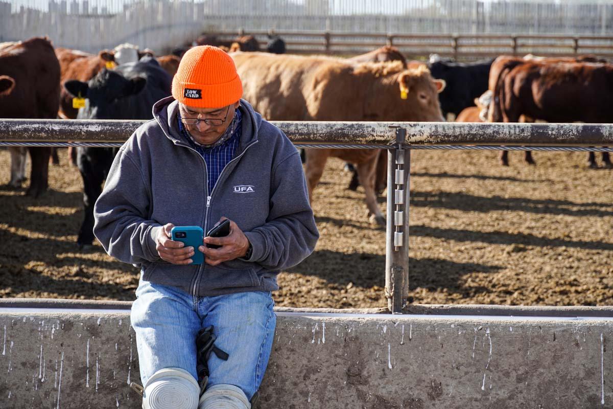 UFA worker using HerdWhistle system