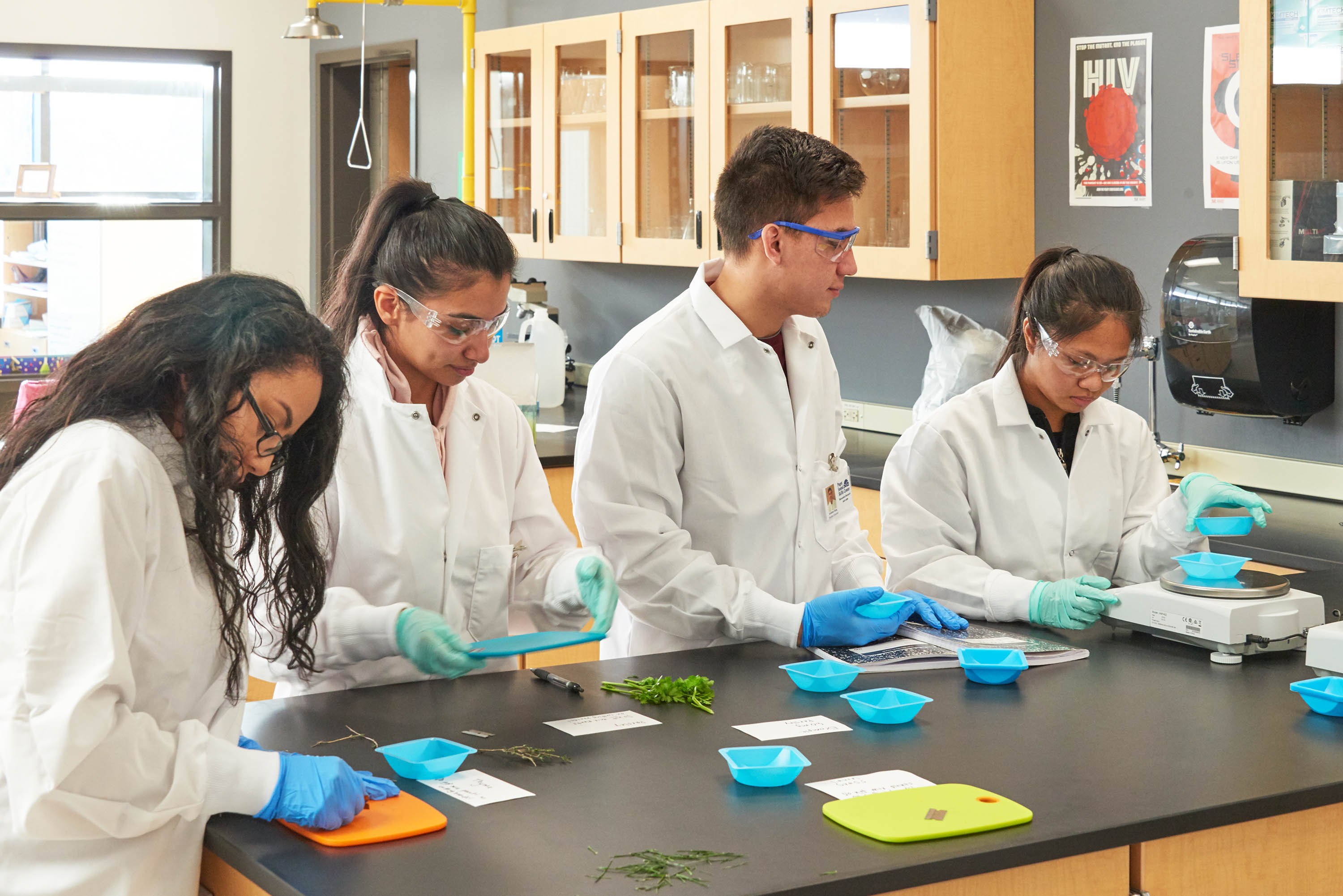 Students in the science lab taking samples from plants.
