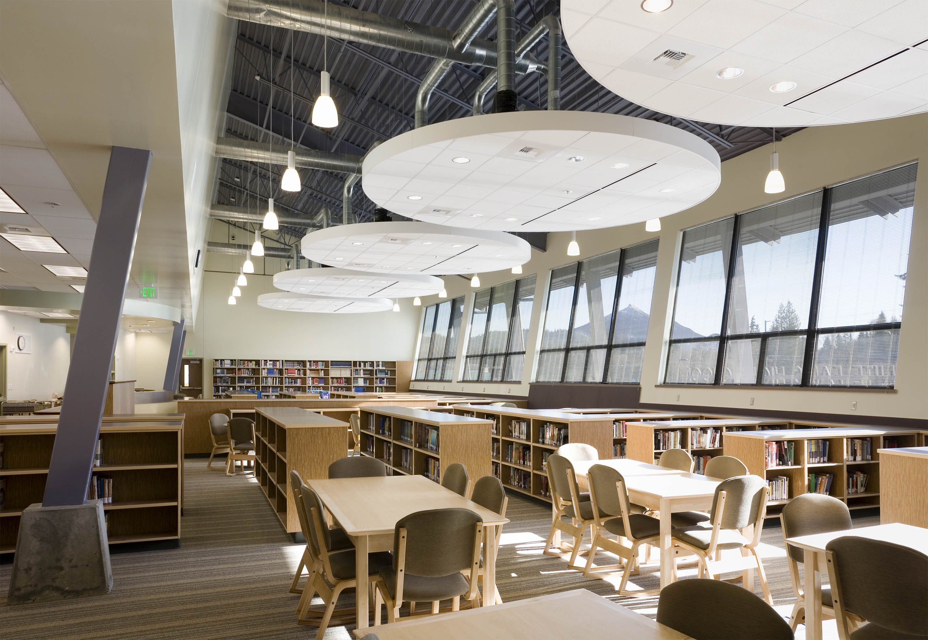 Sunlight streaming into the library.