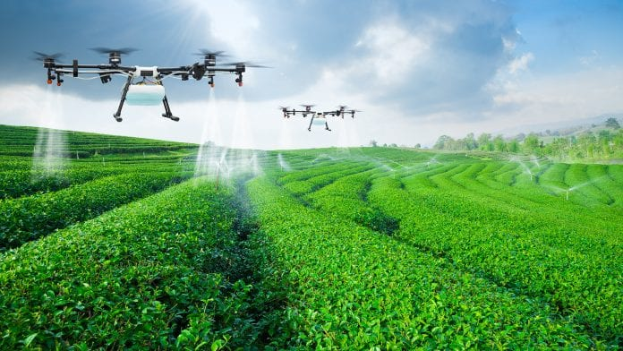 New Zealand's Vision for Agricultural Robotics