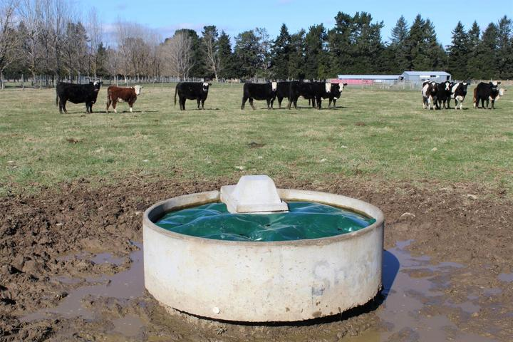 Students' no-ice device has farmers interested