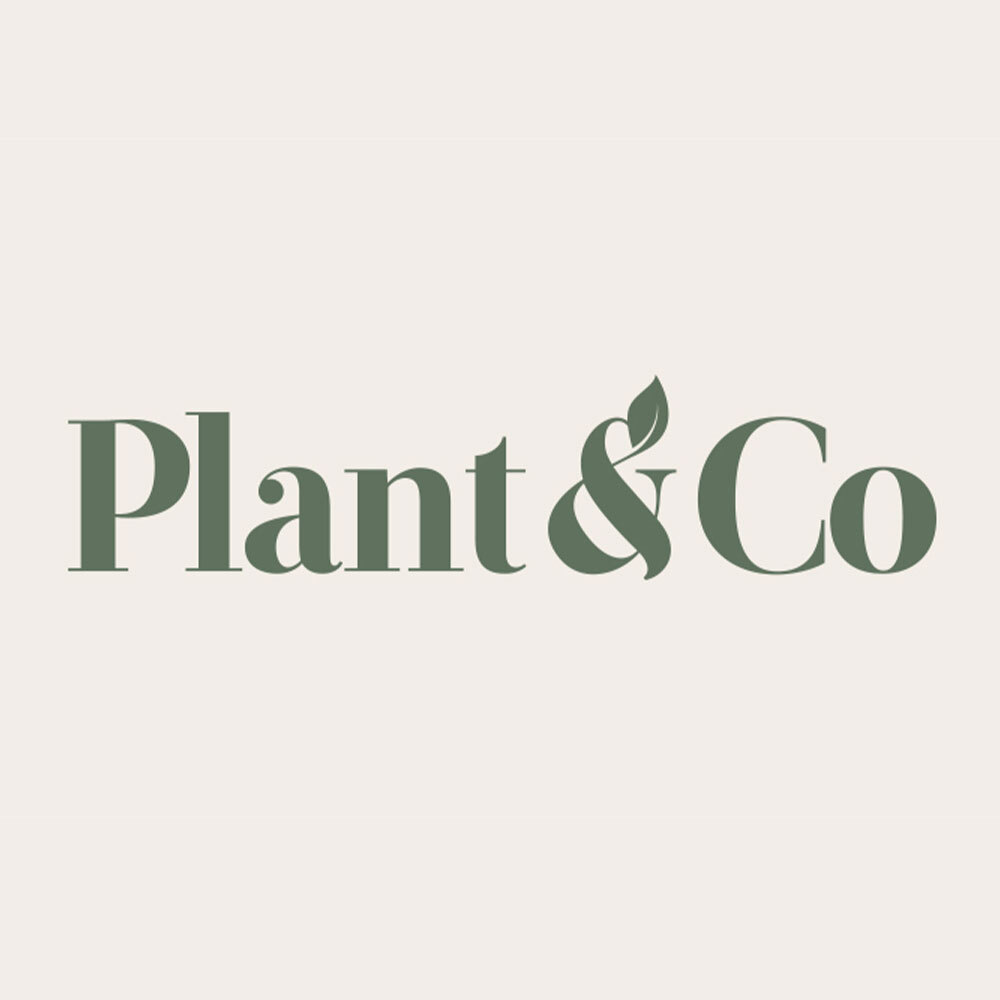 Plant & Co