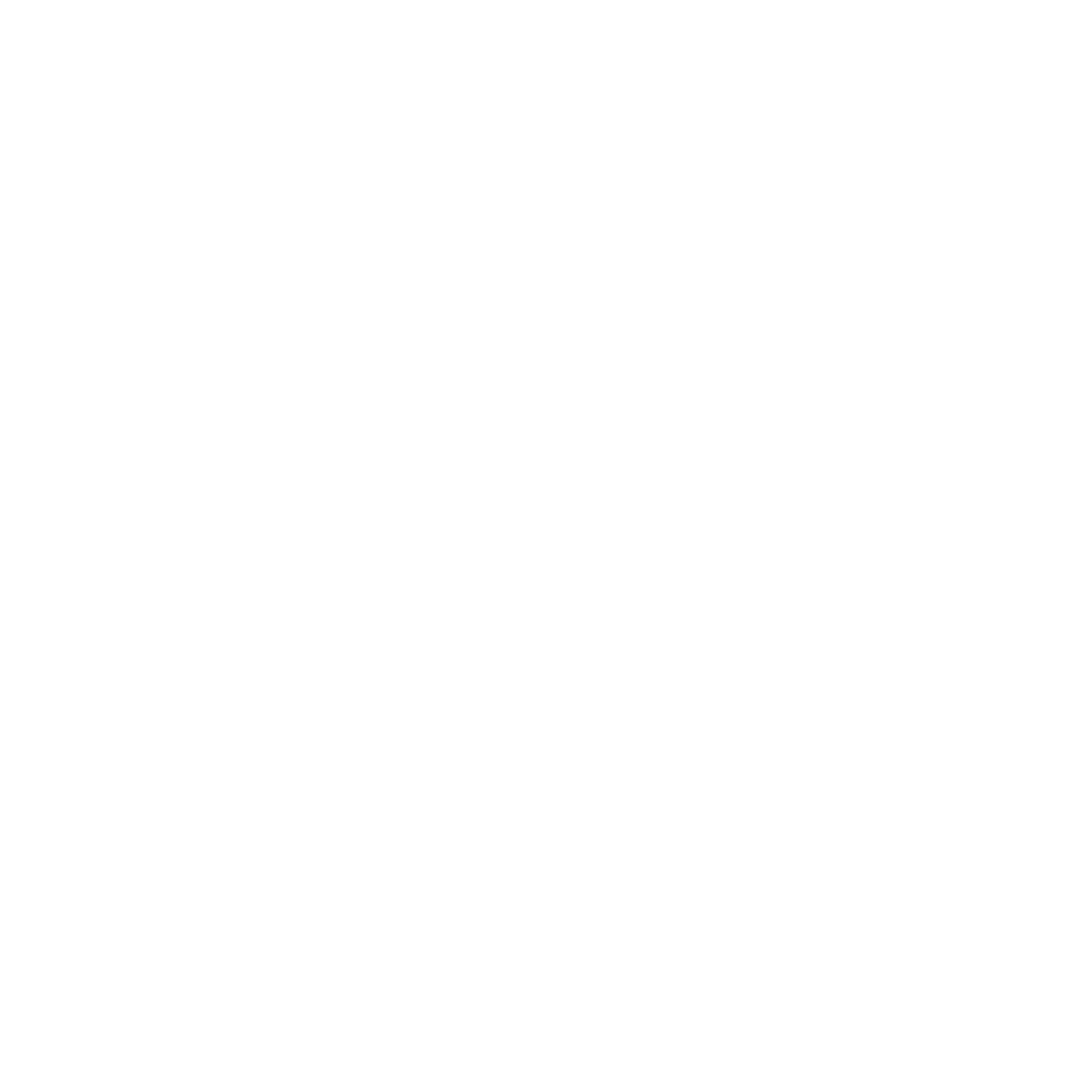 car with check icon