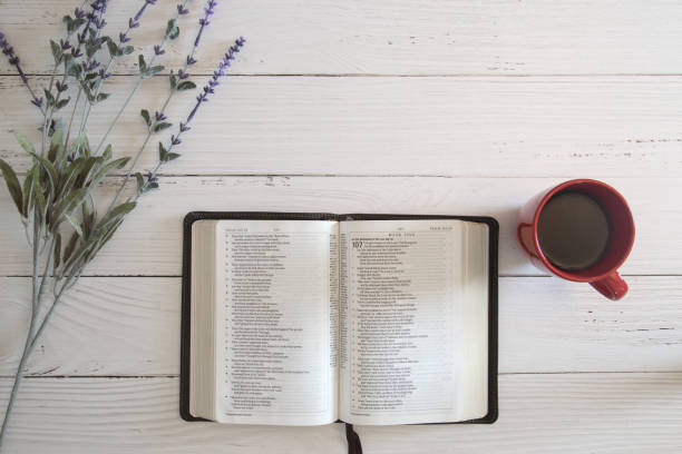 Relatable Bible Verses About Spring