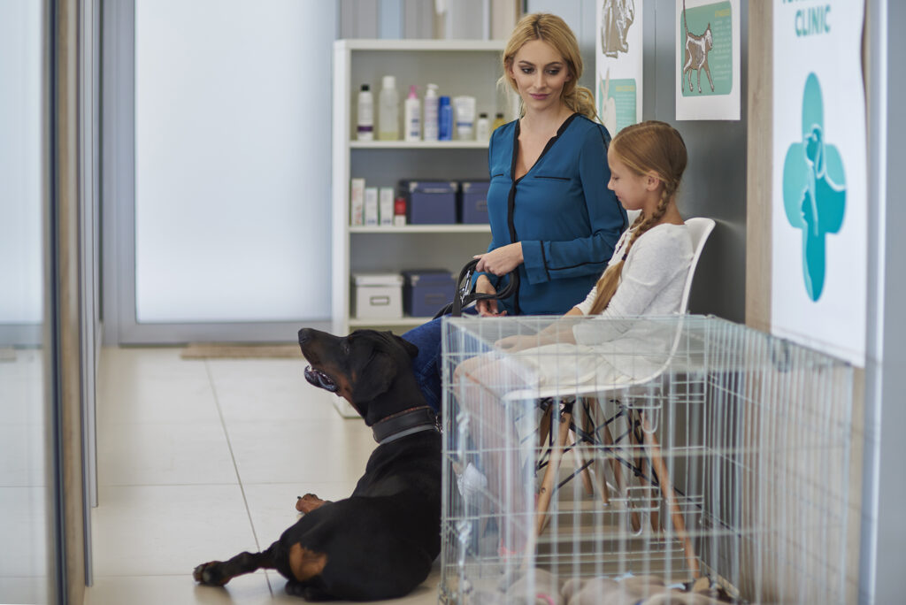 Why come to our Veterinary in Mandeville?