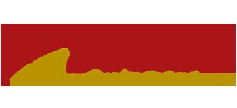 Surge Institute logo