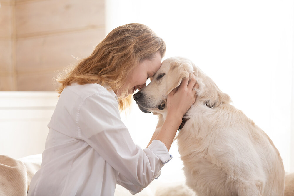 Animal-Assisted Therapy and a Symbol of Pride